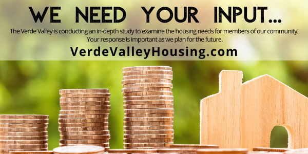 VV Housing Survey Promo